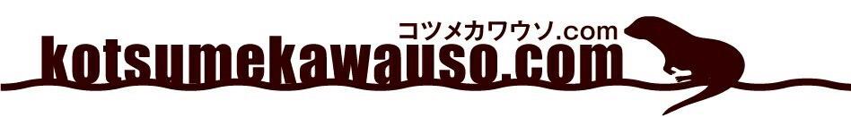 コツメカワウソ.COM