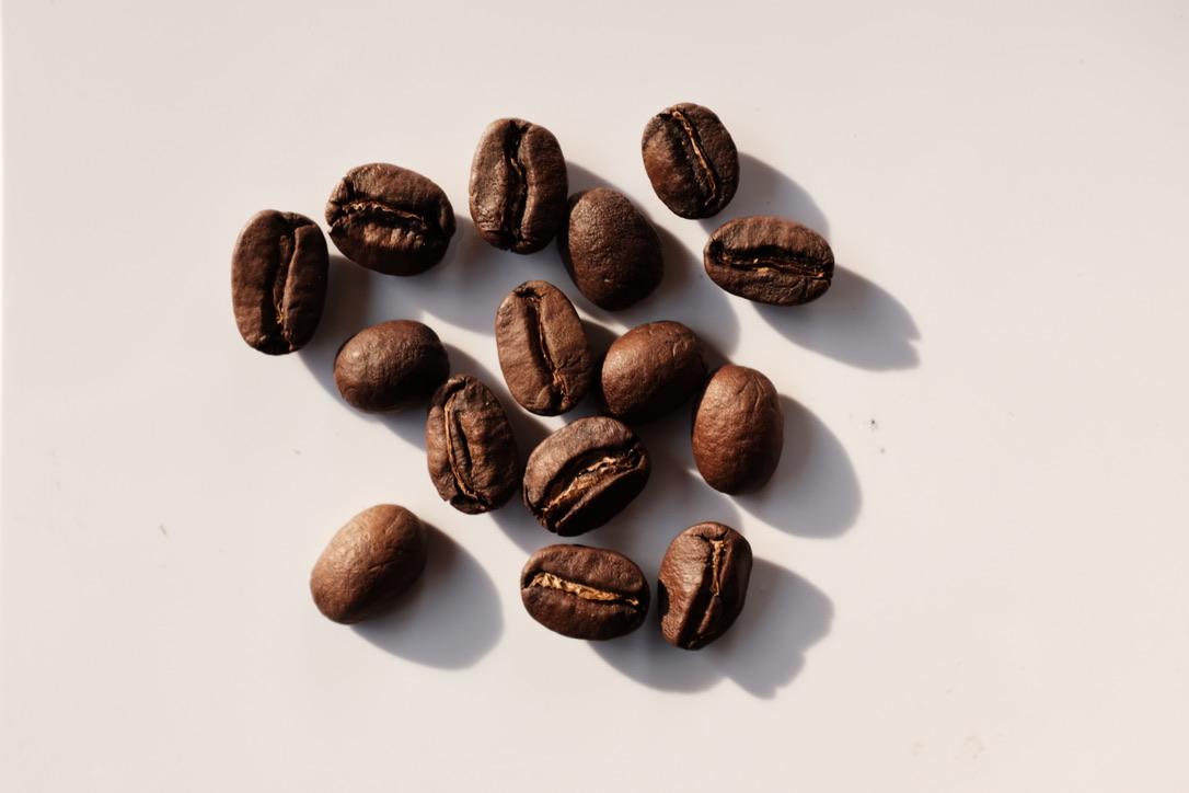 ブルーマウンテンのDNAを継ぐコーヒー『東ティモール レブドゥ・レテン』。(珈琲豆蔵 鎌ヶ谷)