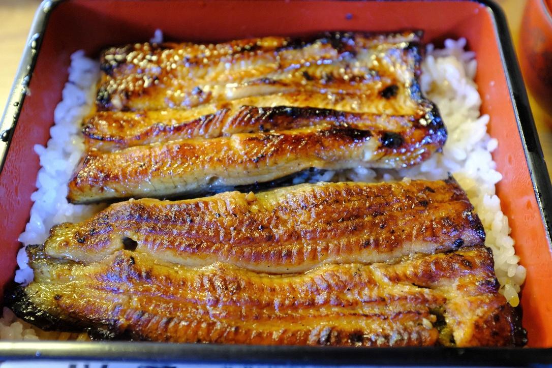ウナギ食べ納め。『川豊』(成田)で最後?の「上うな重」を味わいました。