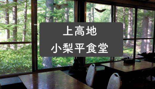 【小梨平食堂/上高地】朝から夜まで営業のキャンプ場併設大衆食堂!