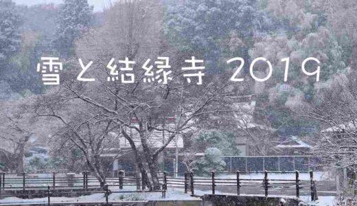雪の記録(千葉県印西市/2019年2月)|雪を纏った結縁寺