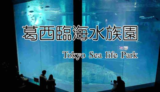 【葛西臨海水族園】入園料が安いのに見どころ多い!大人700円小学生以下は無料