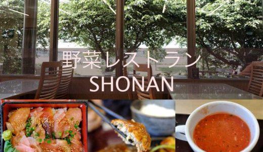 【野菜レストランSHONAN】地元柏産の野菜が食べ放題!手賀沼湖畔の大衆レストラン