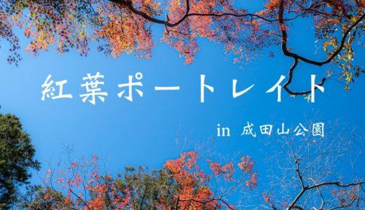 【成田山公園2019】紅葉ポートレート(富士フイルムX-T3× XF50-140mmF2.8 R LM OIS WR)
