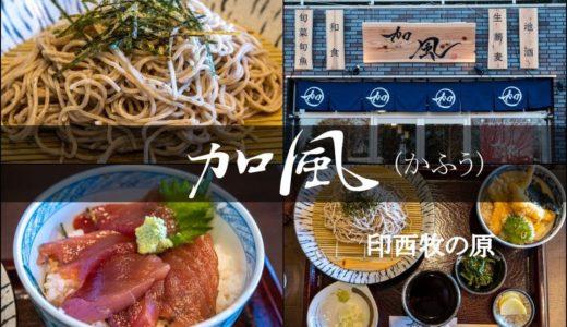【加風/印西牧の原】本格的な二八蕎麦が旨い!量・価格GOODな和食店