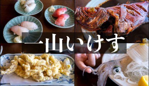 【一山いけす/銚子】イカ活造りが新鮮すぎる!巨大生簀が圧巻の活魚料理店!