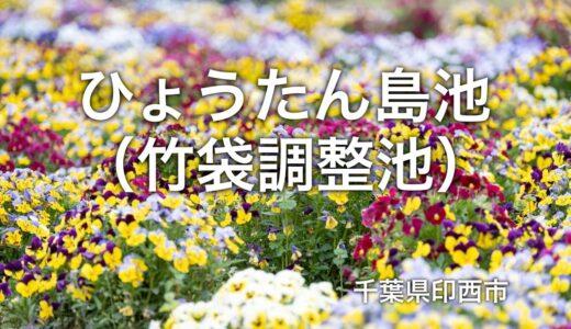 ひょうたん島池(竹袋調整池)の芝桜