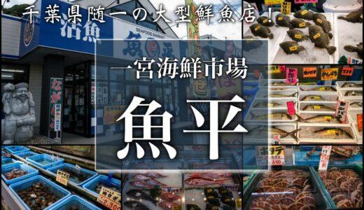 魚捌きたい人必見!魚平商店|千葉県一宮町
